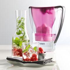 BWT Himbeer-Anis-Wasser Rezept