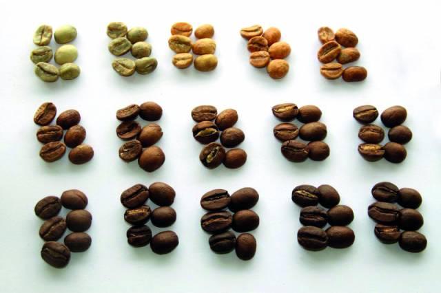 So verändert sich das Aussehen der Kaffeebohne beim Röstverlauf.