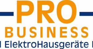 Pro Business Logo
