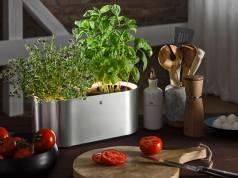 Ausgezeichnet: der Kräutergarten Ambient Kräuter @home von WMF sorgt für frische Kräuter in der Küche.