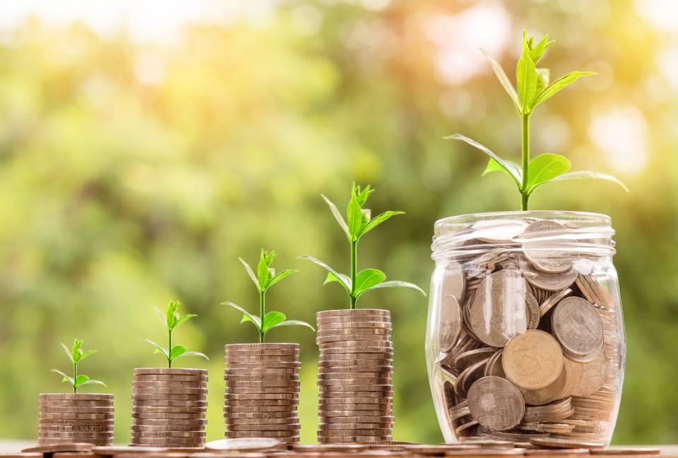 Teaser Geld Wachstum