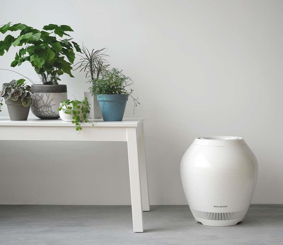 Balmuda Luftbefeuchter Rain im Vasen-Design.