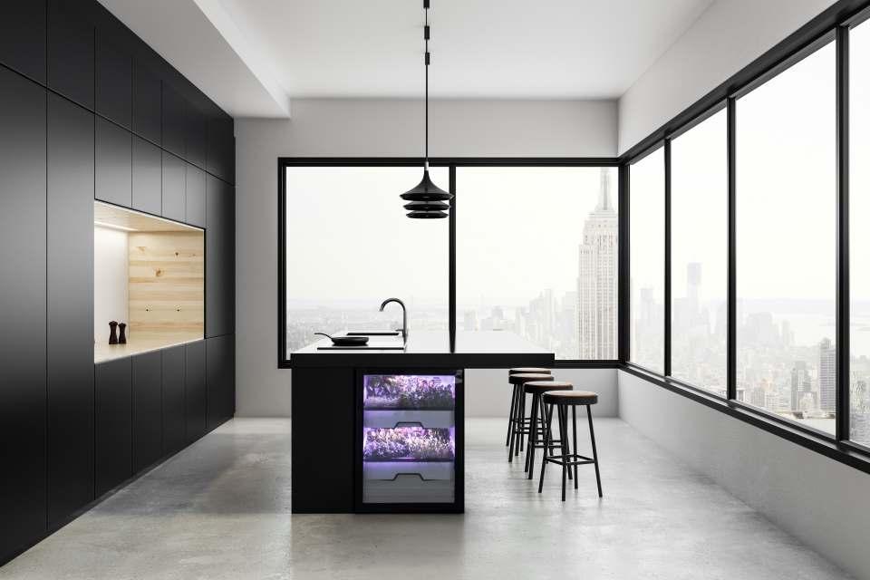 """Die vollautomatisierten """"Plantcubes"""" von Agrilution lassen sich elegant in das Küchenumfeld integrieren. Fotos: Agrilution"""