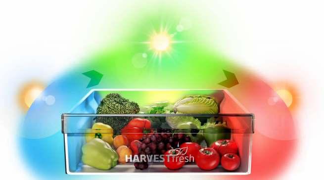 """""""HarvestFresh"""" simuliert im Kühlschrank den 24-Stunden-Tag- und Nacht-Lichtzyklus."""