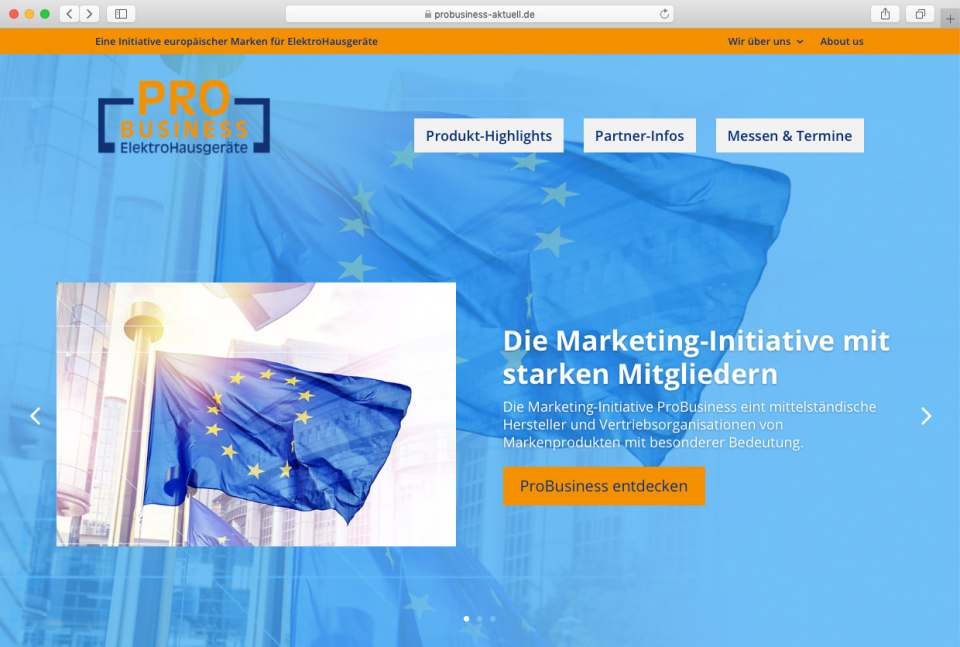 Screenshot Webseite ProBusiness