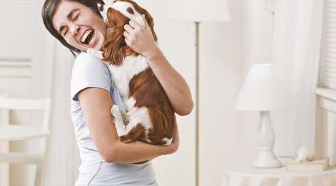 Den Welpen müssen früh Grenzen gesetzt werden. Davon profitiert später auch die Beziehung zwischen Hund und Mensch.